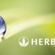 herbalife-globe